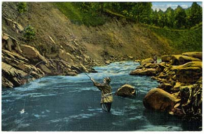Image of man fly fishing in a river. Trout Fishing in Little River, Great Smoky Mountains National Park. Postcard image ca. 1930s-1940s. From the Durwood Barbour Collection of North Carolina Postcards, UNC-Chapel Hill.