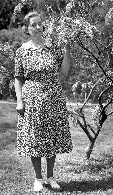 Alma Holland Beers in Coker Arboretum, University of North Carolina, Chapel Hill, October 1950. The photograph accompanied an article describing Alma's winning essay. Image from John N. Couch Biology Library, University of North Carolina, Chapel Hill.