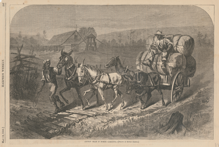 """Cotton team in North Carolina,"" illustration from Harper's Weekly, May 12, 1866. From the collections of the New York Public Library."