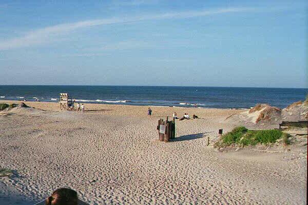 """<img typeof=""""foaf:Image"""" src=""""http://statelibrarync.org/learnnc/sites/default/files/images/coquina_beach.jpg"""" width=""""600"""" height=""""400"""" alt=""""Overwash at Coquina Beach"""" title=""""Overwash at Coquina Beach"""" />"""