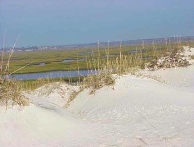 "<img typeof=""foaf:Image"" src=""http://statelibrarync.org/learnnc/sites/default/files/images/dunes.jpg"" width=""392"" height=""297"" alt=""Dunes on Bear Island"" title=""Dunes on Bear Island"" />"