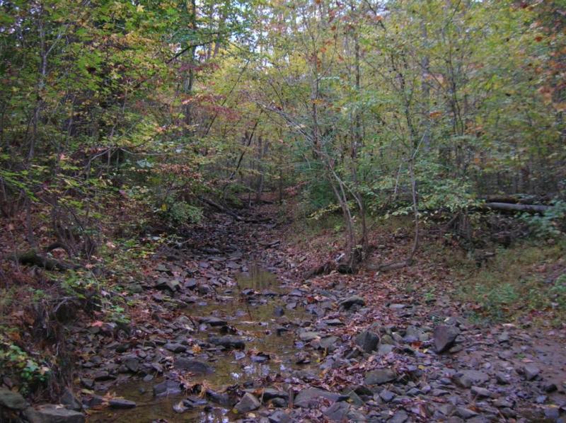 "<img typeof=""foaf:Image"" src=""http://statelibrarync.org/learnnc/sites/default/files/images/lower_mudcreek.jpg"" width=""1024"" height=""766"" alt=""Lower Mud Creek"" title=""Lower Mud Creek"" />"