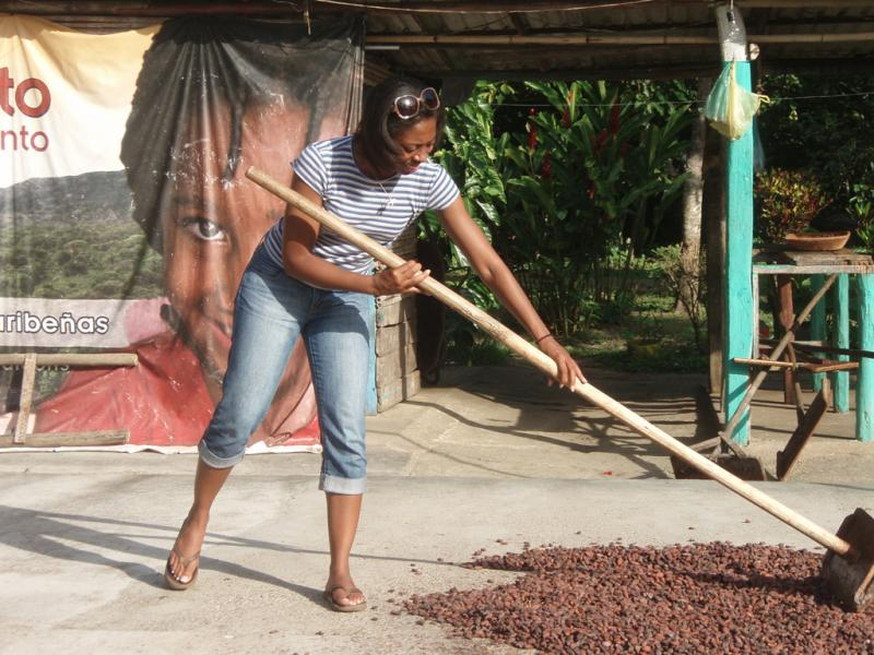 """<img typeof=""""foaf:Image"""" src=""""http://statelibrarync.org/learnnc/sites/default/files/images/p7080618r.jpg"""" width=""""1024"""" height=""""768"""" alt=""""Flipping cacao seeds"""" title=""""Flipping cacao seeds"""" />"""