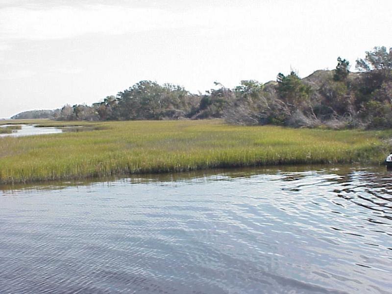 "<img typeof=""foaf:Image"" src=""http://statelibrarync.org/learnnc/sites/default/files/images/salt_marsh_0.jpg"" width=""1024"" height=""768"" alt=""Back-barrier salt marsh"" title=""Back-barrier salt marsh"" />"