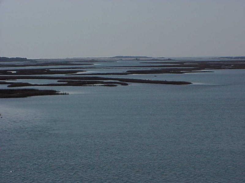 "<img typeof=""foaf:Image"" src=""http://statelibrarync.org/learnnc/sites/default/files/images/salt_marsh_boguebank.jpg"" width=""1024"" height=""768"" alt=""Salt marsh behind Bogue Bank just east of Bogue inlet"" />"