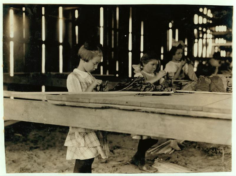 """<img typeof=""""foaf:Image"""" src=""""http://statelibrarync.org/learnnc/sites/default/files/images/tobaccoshed_0.jpg"""" width=""""1024"""" height=""""762"""" alt=""""Little girls work in the interior of a tobacco shed"""" title=""""Little girls work in the interior of a tobacco shed"""" />"""