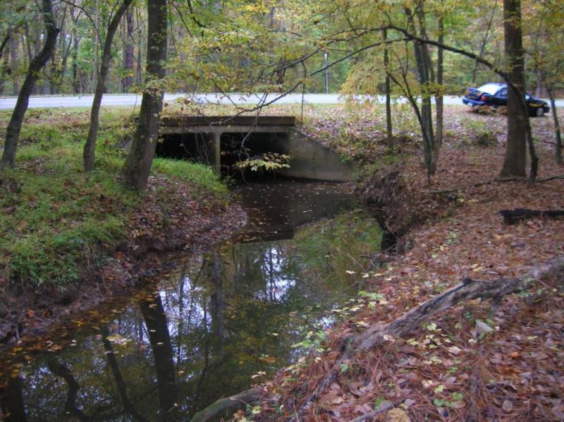 "<img typeof=""foaf:Image"" src=""http://statelibrarync.org/learnnc/sites/default/files/images/upper_mudcreek.jpg"" width=""1024"" height=""766"" alt=""Upper Mud Creek "" title=""Upper Mud Creek "" />"