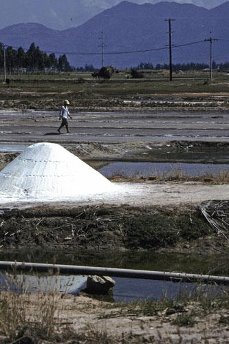 "<img typeof=""foaf:Image"" src=""http://statelibrarync.org/learnnc/sites/default/files/images/vietnam_090.jpg"" width=""333"" height=""500"" alt=""Large mound of sea salt south of Nha Trang"" title=""Large mound of sea salt south of Nha Trang"" />"