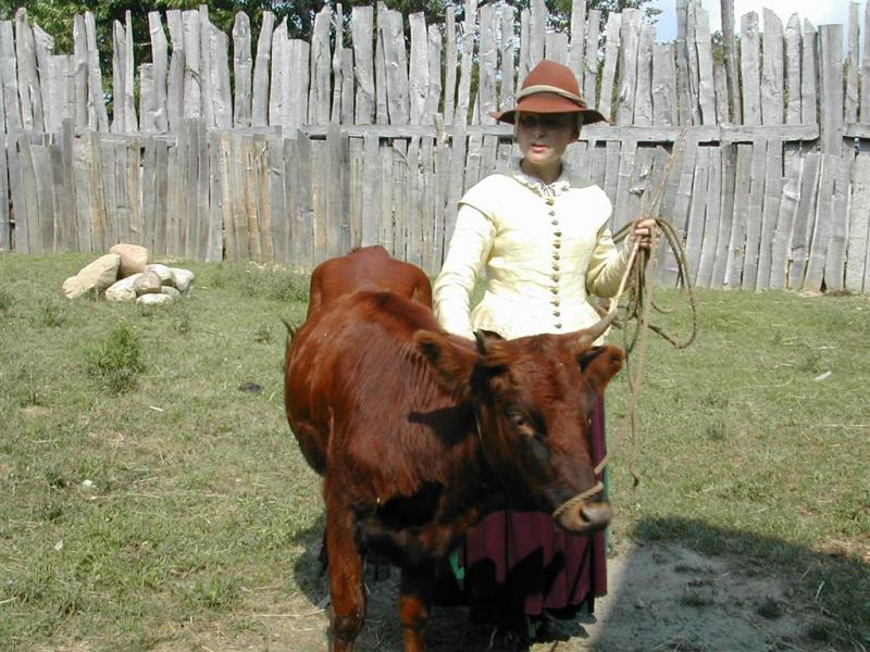 """<img typeof=""""foaf:Image"""" src=""""http://statelibrarync.org/learnnc/sites/default/files/images/woman_and_cow.jpg"""" width=""""1024"""" height=""""768"""" alt=""""Colonial woman and cow"""" title=""""Colonial woman and cow"""" />"""