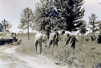 Convicts working on road clearing, 1920-1940. Image from the North Carolina Museum of History.