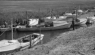 Coastal Region. Shad Fishing, ca. 1935-1940. Image courtesy of State Archives of NC.