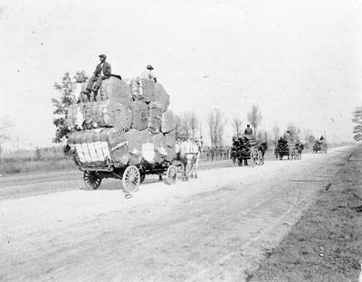 Bales of cotton and wood on the public road leading to Charlotte, NC, ca. 1890. From the H. H. Brimley Photo Collection, North carolina State Archives, call #:  PhC42.Bx21.Scenic Central NC.F40.