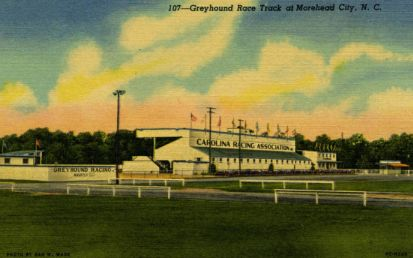 Greyhound Race Track, Morehead City, Postcard, 1950. Image courtesy of the University of North Carolina at Chapel Hill Libraries.