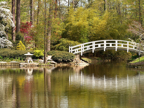 Duke Gardens. Image courtesy of Flickr user Joanna8555.