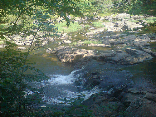 """Eno River State Park, NC."" Eno State Park was the home of the Eno Indians. Photo courtesy of Flikr user airborneshodan, uploaded on June 7, 2008."