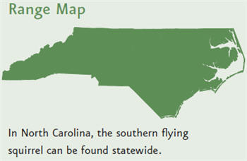 Range of the Southern Flying squirrel is that they are found in all parts of the state