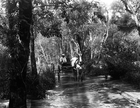 Unidentified man with horse and buggy in water crossing at Smith Creek Ford, August 5, 1907, presumed to be North Carolina but exact location unknown. From Carolina Power and Light Photograph Collection, North Carolina State Archives, call #:  PhC68_1_555_2.