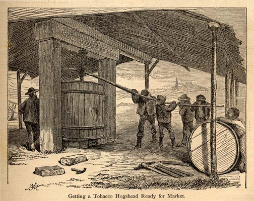 Getting a tobacco hogshead ready for market, 1875