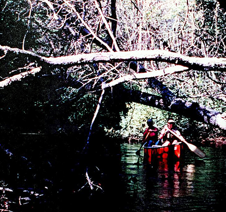 Canoeing at Lumber River State Park, photograph ca. 1990s. From the <i>Lumber River State Park Master Plan</i>, N.C. Division of Parks and Recreation, 1995.  From the collection of Clemson University.