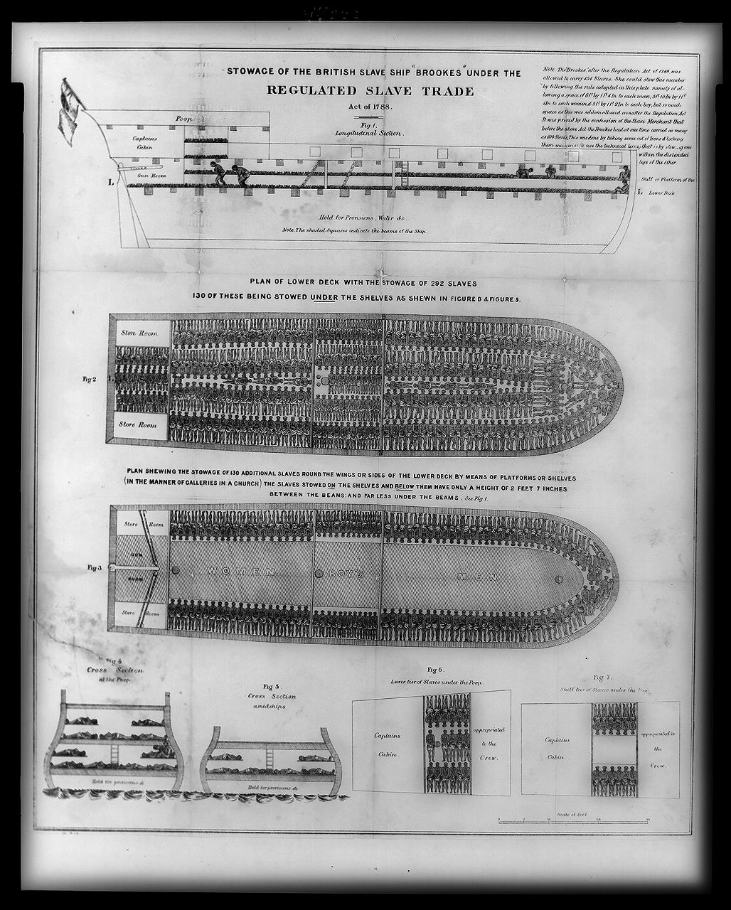 Stowage of the British slave ship