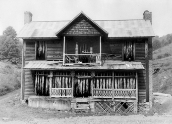 Abandoned dwelling being used as a curing barn for burley tobacco in Watauga County, 1960. North Carolina Collection, University of North Carolina at Chapel Hill Library.
