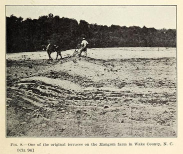"Photograph of ""One of the original terraces on the Mangum farm in Wake County, N.C.,"" from J.S. Cates' <i>The Mangum terrace in its relation to efficient farm management</i>, p. 9, published 1912 by the U.S. Department of Agriculture, Bureau of Plant Industry.  Presented on Archive. org."
