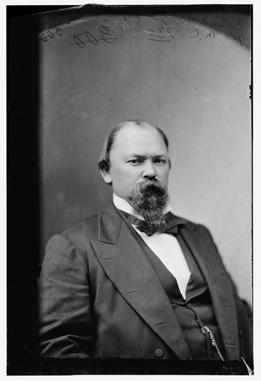 Photographic portrait of the Hon. Joseph John Martin of N.C., wet collodion negative circa 1870-1880.  From the Brady-Handy Collection, Library of Congress Prints & Photographs Online Catalog.