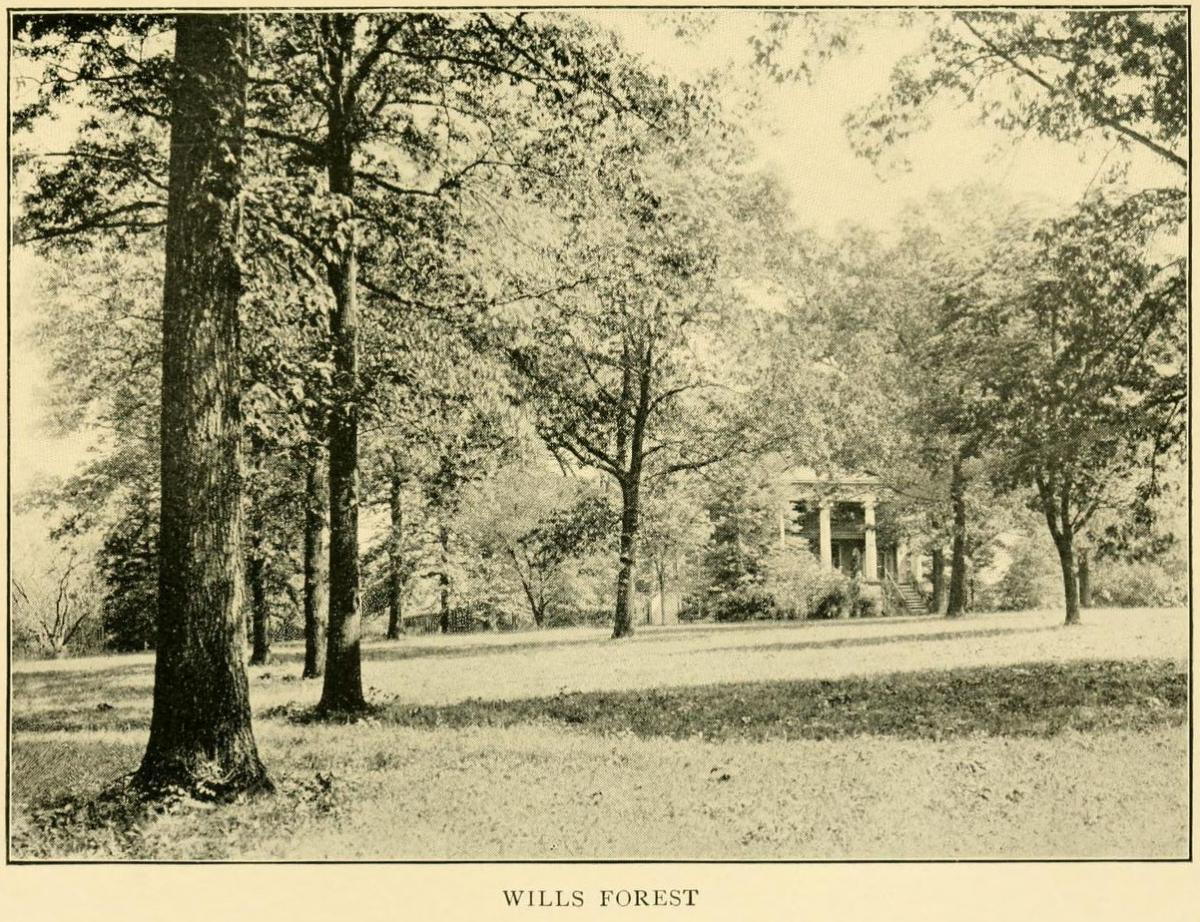Photograph of Wills Forest, the Lane Family home in Raleigh inherited by John Devereux's wife, Margaret.  From Margaret Devereux's <i>Plantation Sketches</i>, [p. 45-55], published 1906 by the Riverside Press, Cambridge.  Presented on Archive.org.