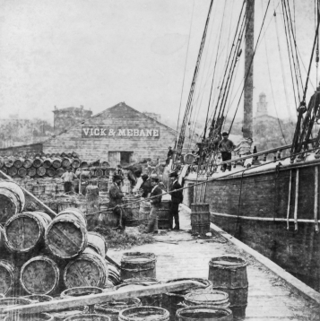 Barrels filled with pine resin being loaded on a German ship at the port of Wilmington in the early 1870s. North Carolina Collection, University of North Carolina at Chapel Hill Library.