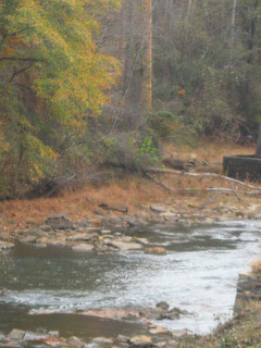 Paceolet River, Spartanburg, SC. Image courtesy of Flickr user Becky Pittman.