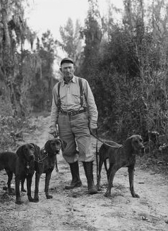 """Unidentified man with Plott Hounds on a bear hunt in Lake Waccamaw, NC, circa early 1950s."" Image courtesy of UNC Libraries."