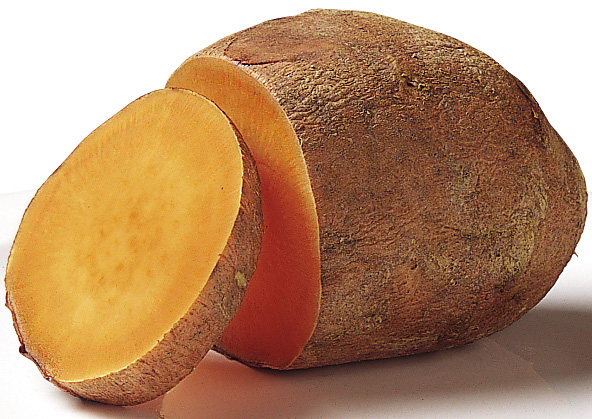 "Sweet Potato."" National Cancer Institute, National Institutes of ..."