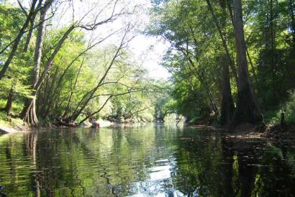 """Trent River beginning at Comfort, NC  to Chinquapin Chapel Road, State Road # 1129 bridge."" Photo courtesy of Waterway Stewards."